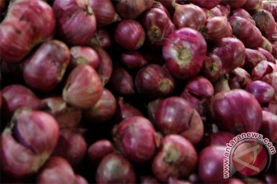 30 ton bawang merah selundupan dimusnahkan