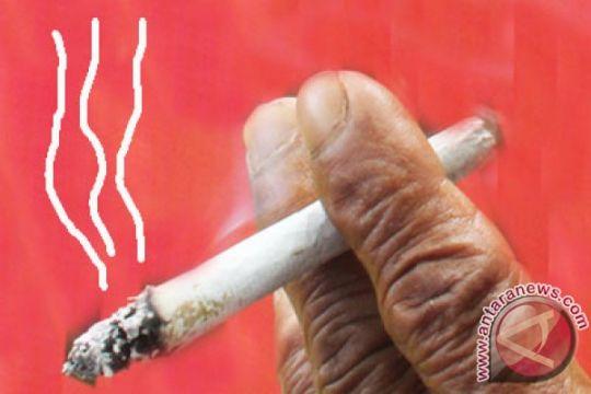 Dari sudut penyakit, rokok lebih rugikan perokok pasif
