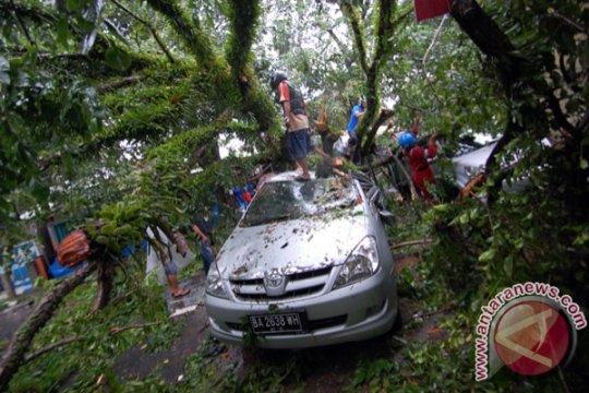 Bogor dilanda longsor dan pohon tumbang