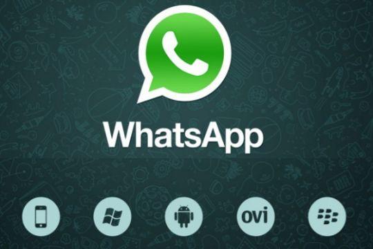 WhatsApp bisa diakses melalui komputer desktop