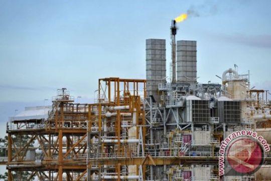 Meniti stabilitas investasi untuk ketahanan energi