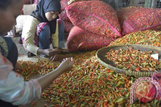 Pasokan sayur dan buah di Pasar Induk Kramat Jati aman