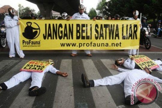 Penyayang binatang minta Jokowi berantas pasar hewan ilegal