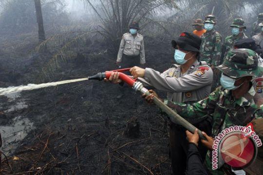 14 pembakar lahan ditangkap