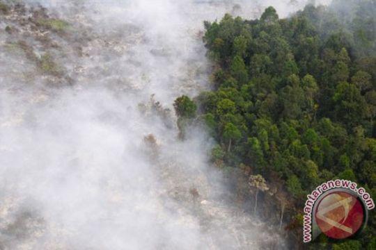 Lahan di Riau terbakar, Chevron sekedar memantau