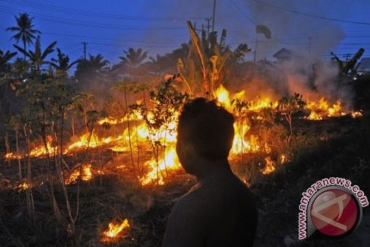 KADIN desak Kementerian Ristek teliti asap Riau