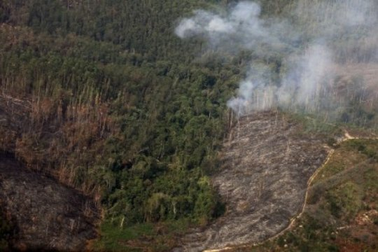AICHR desak penerapan perjanjian ASEAN tentang kabut asap secara penuh