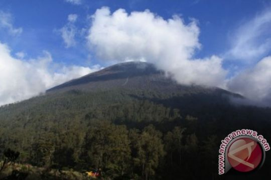Satu Pendaki hilang di Semeru  ditemukan selamat