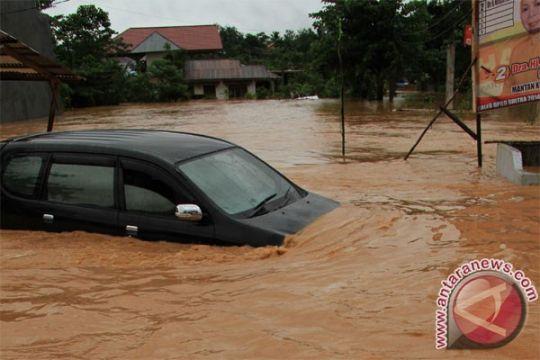Puluhan hektare sawah di Baubau-Sultra terendam banjir