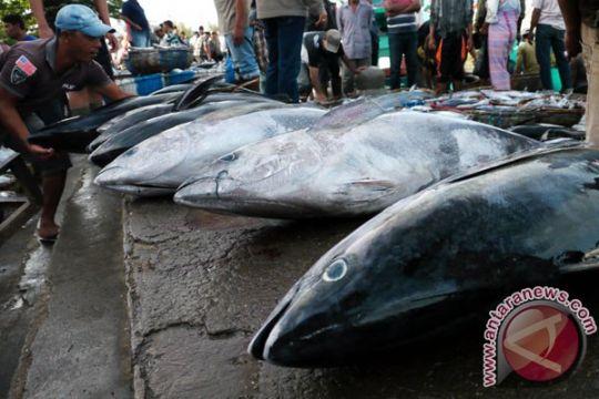 KKP klaim tangkapan ikan tak lagi langsung dibawa ke luar negeri
