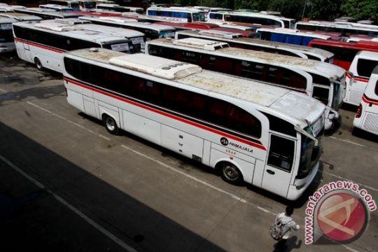 Organda siapkan 34.000 bus hadapi libur Natal
