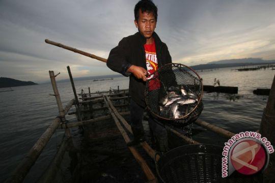 Walhi desak pemerintah tertibkan keramba Danau Toba