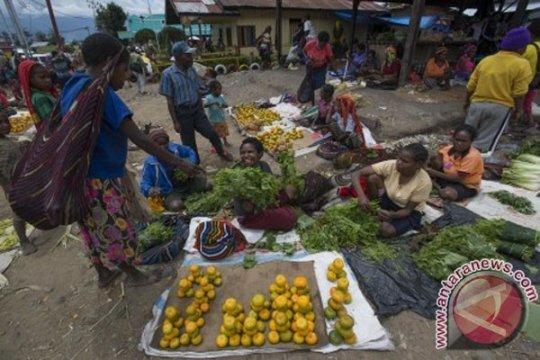 Kementan kembangkan komoditas pertanian lokal Papua