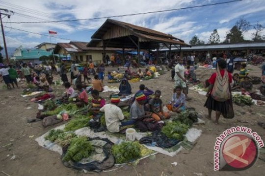 Warga Jayawijaya-Papua bersama TNI panen padi organik