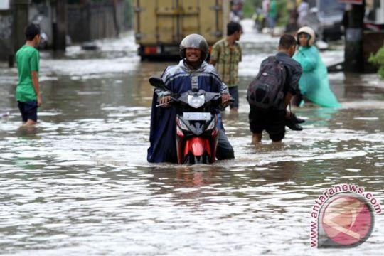 Banjir Bungus diduga akibat pembalakan liar
