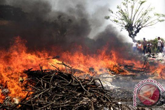 Kabupaten Lamandau mulai diselimuti kabut asap