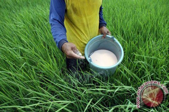 Pemupukan berimbang tingkatkan hasil panen Kampung Petroganik Jombang