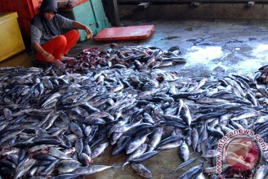 Ikan keumamah Aceh segera tiba di Palu