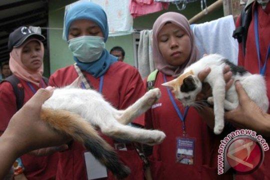 PDHI: Jabar belum terbebas dari penyakit rabies
