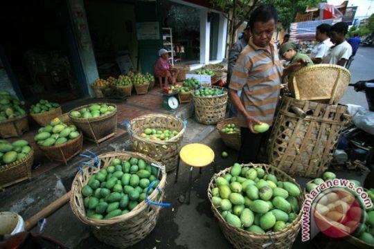 Indonesia ekspor mangga dengan teknologi pengawet alami