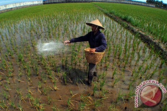 Program ketahanan pangan kawasan pesisir Tangerang-Banten diperkuat