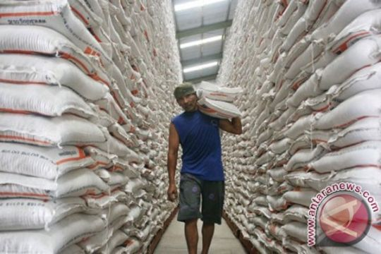 Ditjen BC bantah ada impor beras ilegal