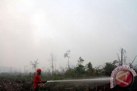 Kabut asap selimuti Kota Kualatungkal