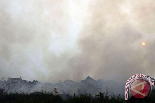 Lahan terbakar seratus keluarga di Riau mengungsi