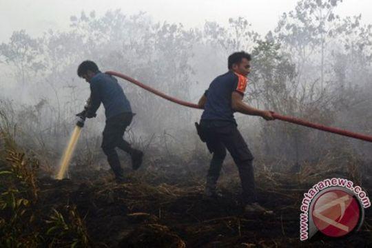 10.502 Hektare lahan Riau terbakar