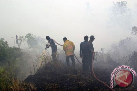 Luas lahan yang terbakar di Riau sampai 20.067 hektare