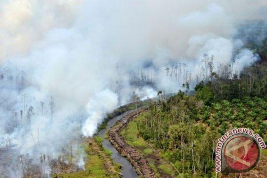 Riau latih 100 tenaga pemadam kebakaran lahan