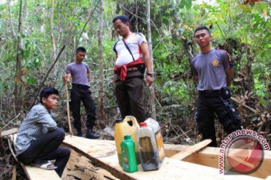 Polri selidiki khusus oknum aparat perambah hutan