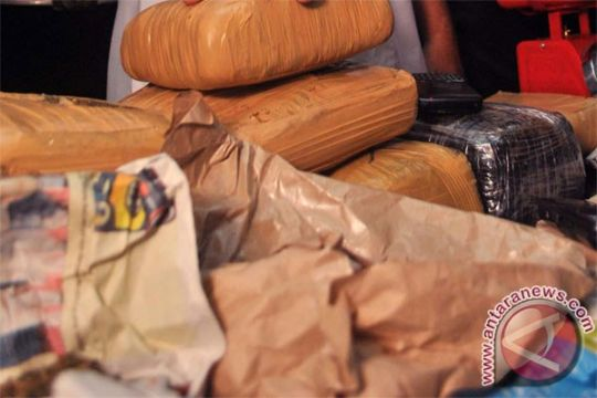 Polda Metro tangkap oknum BPOM konsumsi shabu