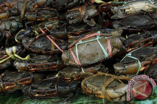 Menteri Susi: Warga Kamoro lindungi kepiting bakau