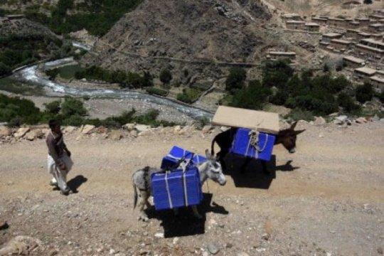 10 pekerja pemilu dan anak kecil tewas di Afghanistan