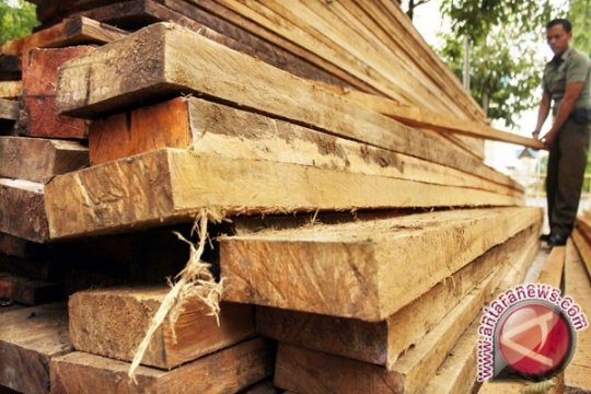 Dandim Putussibau dorong proses oknum aparat terkait ilegal logging