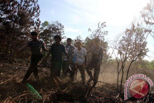 TNI tangkap tangan tiga terduga pembakar lahan