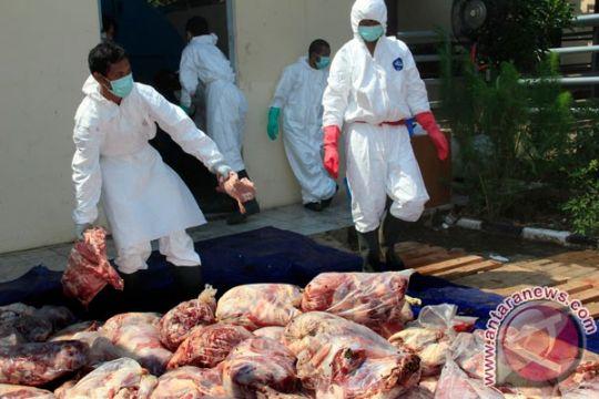 Mentan : peredaran daging celeng meningkat