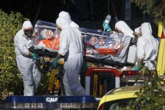 Peneliti : tembakau bisa tangkal virus ebola