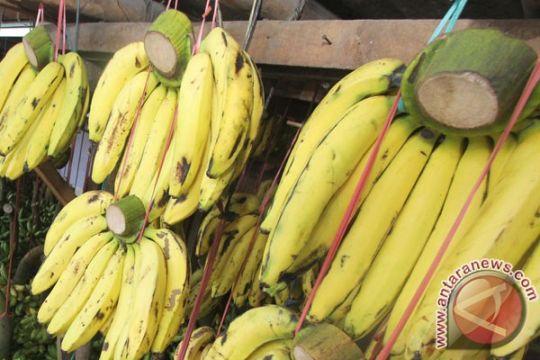Dosen Unitomo buat donat dari kulit pisang