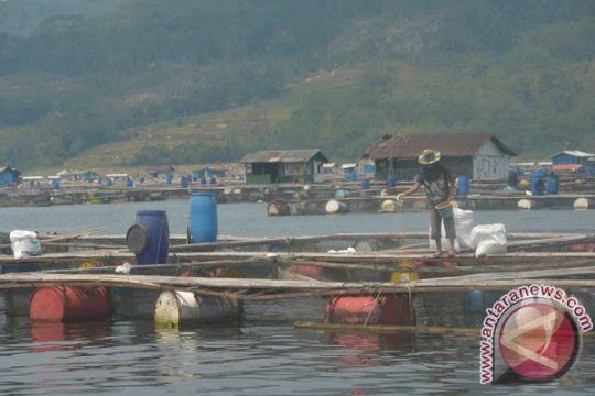 Perubahan iklim membuat ratusan ton ikan mati di Cianjur
