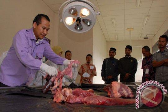 UGM terjunkan 321 mahasiswa pemeriksa hewan kurban