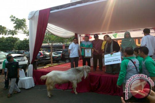 Dompet Dhuafa sebar 25 ribu hewan kurban