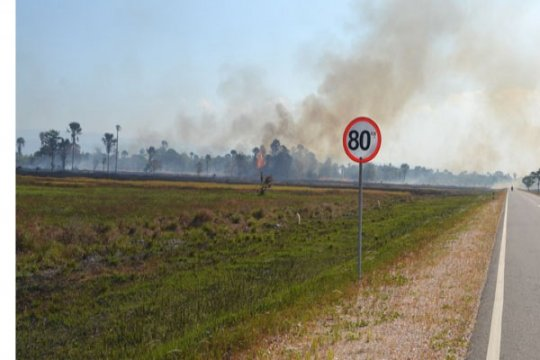 300 hektare savana Taman Nasional RAW terbakar