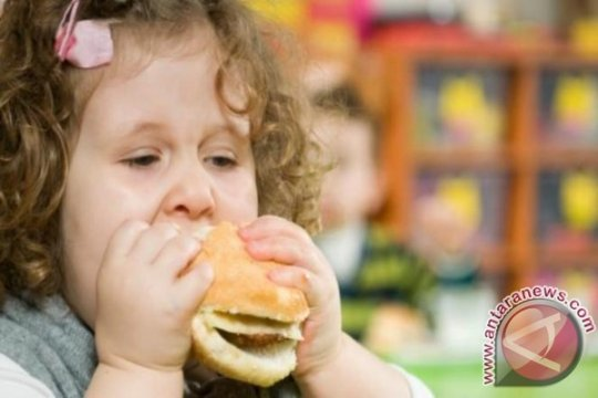 Pakar: Mengatasi obesitas anak bukan dengan kurangi porsi makan