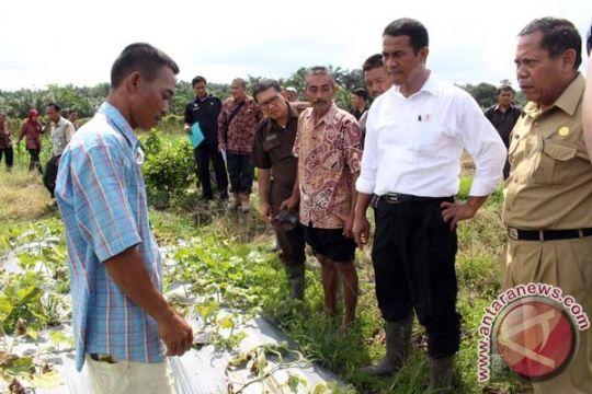 Mentan janji perjuangkan legalitas lahan pertanian Kotim