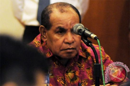 Papua Barat bersiap jadi pemasok daging sapi