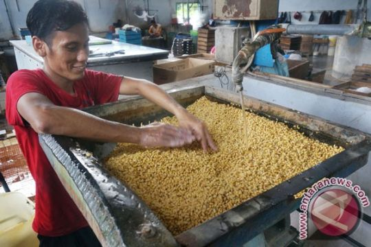 Ribuan warga Bojonegoro makan tahu bareng