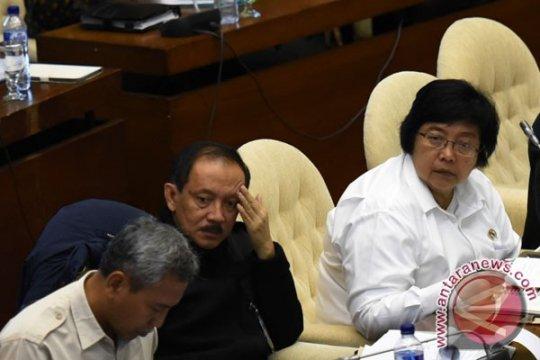 DPR setujui usul anggaran Kementerian Lingkungan Hidup