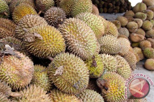 Penderita diabetes harus hati-hati konsumsi durian